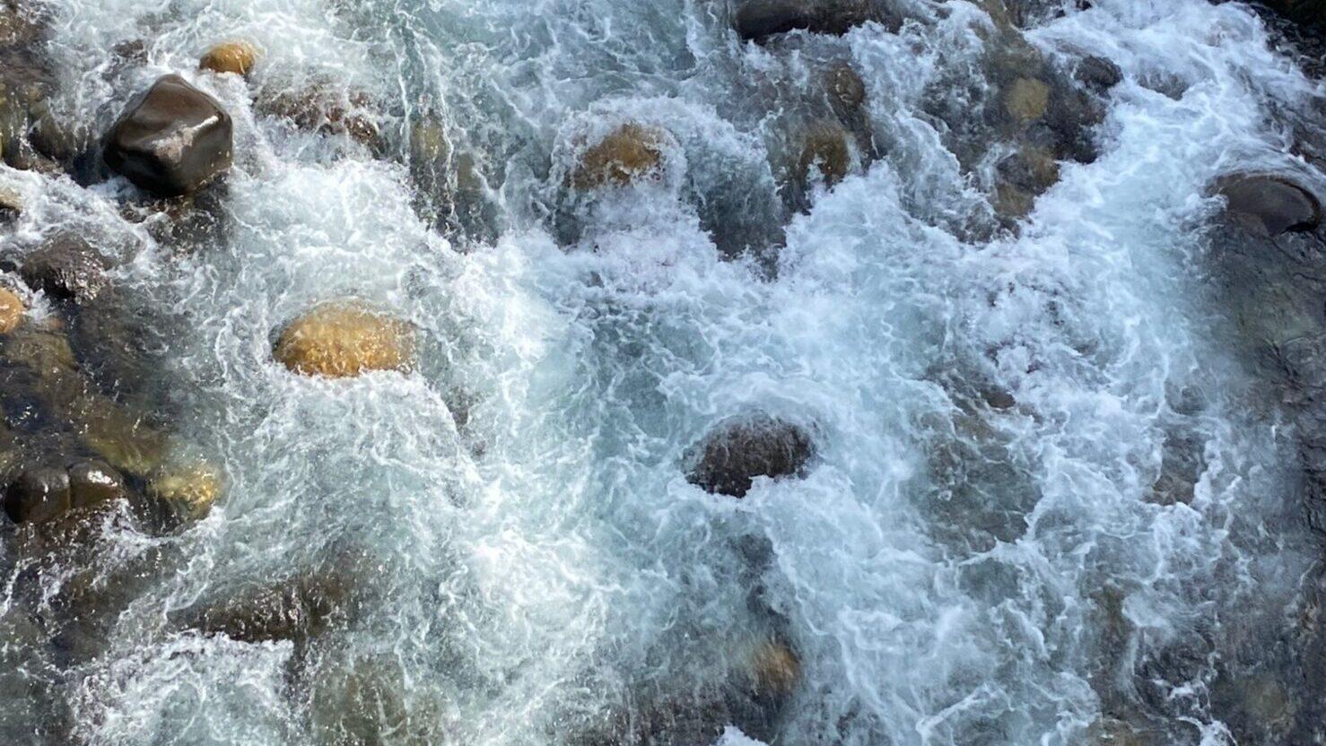 郡上八幡 川