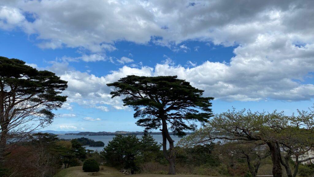 松島を上から眺めたいなら西行戻しの松公園へ